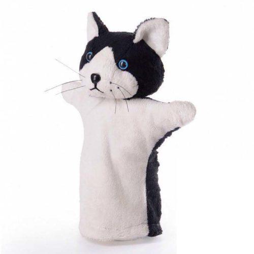 گربه 11833 1 شادی رویان